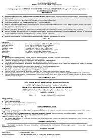 Curriculum Vitae Example Of Job Objective For Resume Teenage Cv