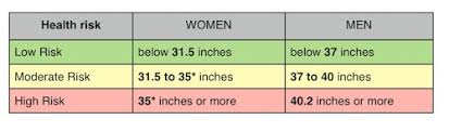 Waist Circumference Measure Your Waist To Help Measure Your