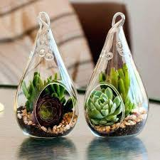 hanging glass terrarium rack definition