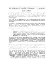 Resume Cover Letter For High School Students High School Resume ...