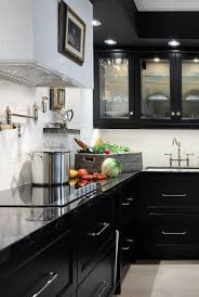 Black Kitchen Design Pictures