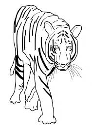 Small Picture Tiger coloring Free Animal coloring pages sheets Tiger