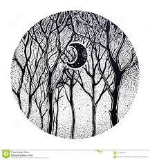Woodland Night Tree Scenery With Crescent Moon Stock Vector