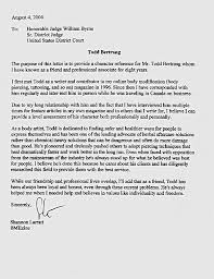 Example Of Reference Letter Custom Character Letter To Judge Example Morenimpulsarco