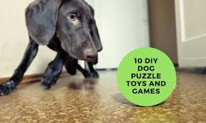 10 best diy dog puzzle toys and to make at home for your pup