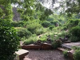 good collection of desert plants rao jodha desert rock park