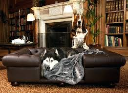 luxury dog crates furniture. Luxury Dog Furniture Crates Shop Pet And Bed Throws Of Large