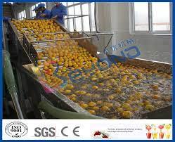 Kademesiz Değiştirme Meyve ve Sebze İşleme Cihazı, Meyve Ve Sebze Yıkama  Makinesi