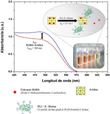 Derivatization And Spectroscopic Characterization Of A Biopolymer
