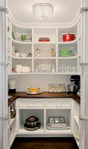 Gallery of Kitchen Pantry Ideas Inspirations With Dream House Pantries  Stylish Pictures