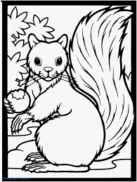 Image 13 Of 50 Awesome Squirrel Coloring Pages Printable Model