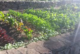 sonoma farm stay agriturismsonoma valley ranch garden estate produce garden certified sustainable