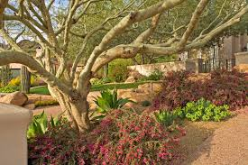 Small Picture Garden Landscape Designer Photo Album Patiofurn Home Design Ideas