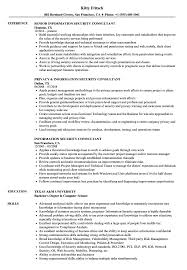 Information Security Consultant Resume Samples Velvet Jobs