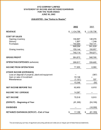 Basic Financial Statement Template Financial Report Example Ninjaturtletechrepairsco 7