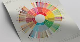 New Flavor Wheel Will Turn You Into A Coffee Connoisseur