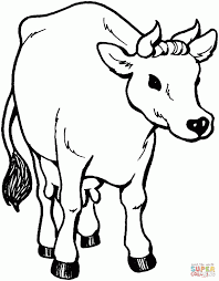 Small Picture Cow Coloring Page Dr Odd Picture To Color Animal Pictures