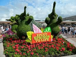disney flower and garden. Beautiful Disney Looking  In Disney Flower And Garden O