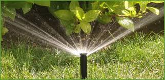 Image result for If You Need Reliable Lawn Sprinkler Repair Long Island Companies Can Help