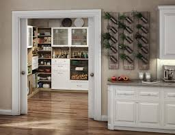 Wire Pantry Shelving Solutions Custom Systems Units Ideas Shelves