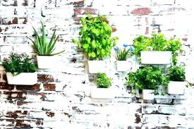 medium size of indoor herb pots nz garden tray plant hanging planters large outdoor wall planter