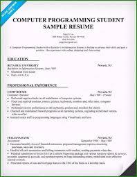 Sample Computer Programmer Resume Programmer Resume Example 46 Factors In 2019
