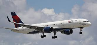 Image result for delta airlines