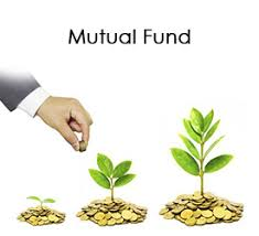 Image result for Mutual fund day