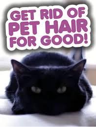 get rid of pet hair pin