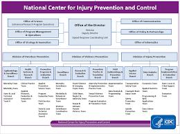 Cdc Organizational Chart Injury Organization And Leadership Org Chart Injury Center Cdc