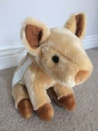 new with s wild boar piglet soft toy from dublin zoo