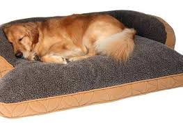 small dog furniture. Oversized Dog Bed Amazon Beds Wondrous Big Furniture Small Xl For Great Danes