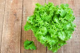 Lettuce Types Chart 14 Different Varieties And Types Of Lettuce Epicurious