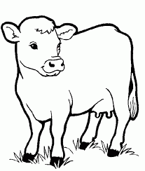 Small Picture Cow Animals Coloring Pages For Kids Printable Coloring Animal