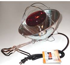 SINGLE HEAT LAMP INFORMATION | Moses Nutrition