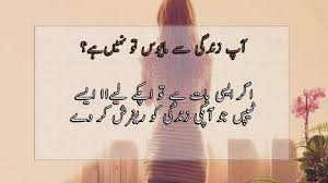 11 Inspiration Quotes For Dis Heart People In Urdu And Hindi