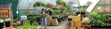 garden seed companies. Delighful Companies CURRENT SPECIALS Throughout Garden Seed Companies
