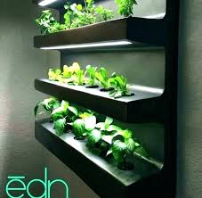 hydroponic wall garden indoor wall garden herb wall garden ideas medium of distinguished kits by is hydroponic wall garden