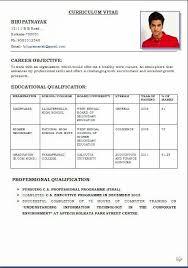 Download Resume Format Download Resume Format Beautiful Professional