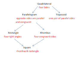 Quadrilateral Flow Chart Blank Quadrilaterals Flowchart Geometry Quadrilaterals Flow Chart