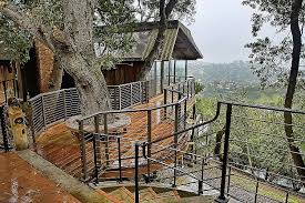 tree house plans for adults. Tree House Designs And Plans For Adults Awesome Houses Personal Stories Concepts Building Pictures E