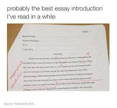 best essay introduction best essay writer best essay introduction