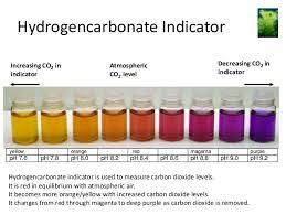 Bicarbonate Indicator Colour Chart Carbon Dioxide Pmg Biology