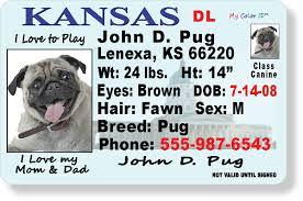 Kansas Kansas License Kansas Drivers License Drivers License Kansas License Drivers Drivers