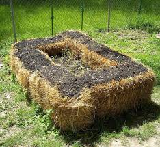 the complete beginner s guide to straw bale gardening