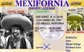 Image result for no Driver Permits for Illegal Immigrants?