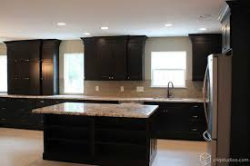 kitchens with black cabinets. Black Kitchen Cabinets Traditional-kitchen Kitchens With T