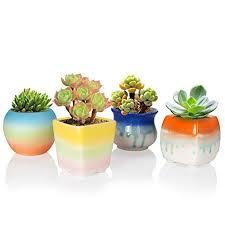 Solofish Succulent Plant Pot, Set Of 4 Cute Rainbow Ceramic Pot Cactus Plant  Pot Colorful