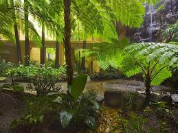 Small Picture low maintenance garden design ideas australia Margarite gardens