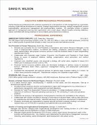Functional Resume Builder Inspiration Incredible Michigan Works Resume Builder Resume Design